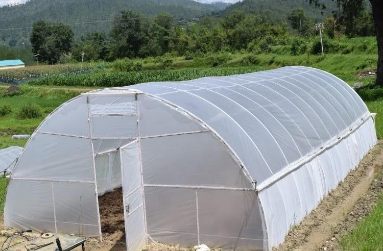 विवेकानंद पर्वतीय कृषि अनुसंधान संस्थान अल्मोड़ा द्वारा विकसित वीएल पोर्टेबल पॉलीहाउस।