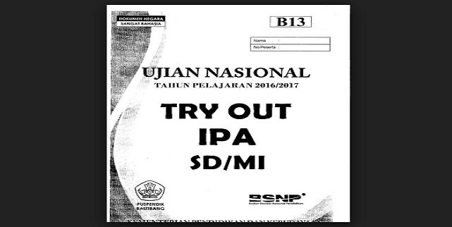 Download Kumpulan Soal Try Out Ipa Sd Mi Info Guruku