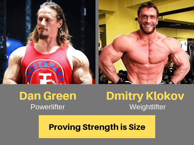 Proving That Strength Is Size and how to gain muscle