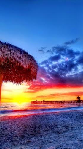 Bãi biển nhiệt đới