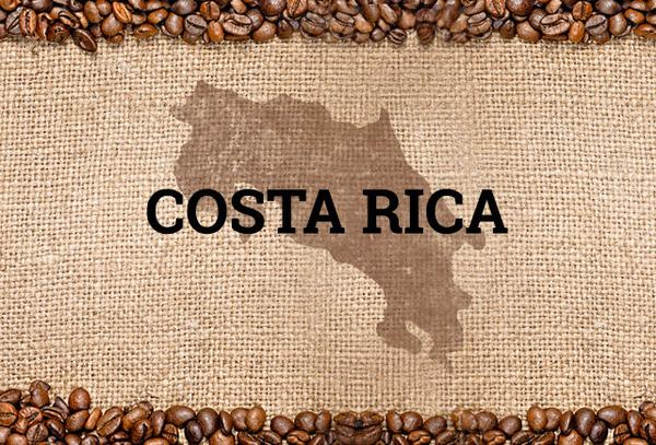 10 major exports of Costa Rica