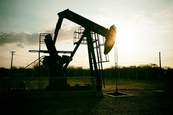 Crise do Petróleo de 2020: A Petrobras Sobrevive?