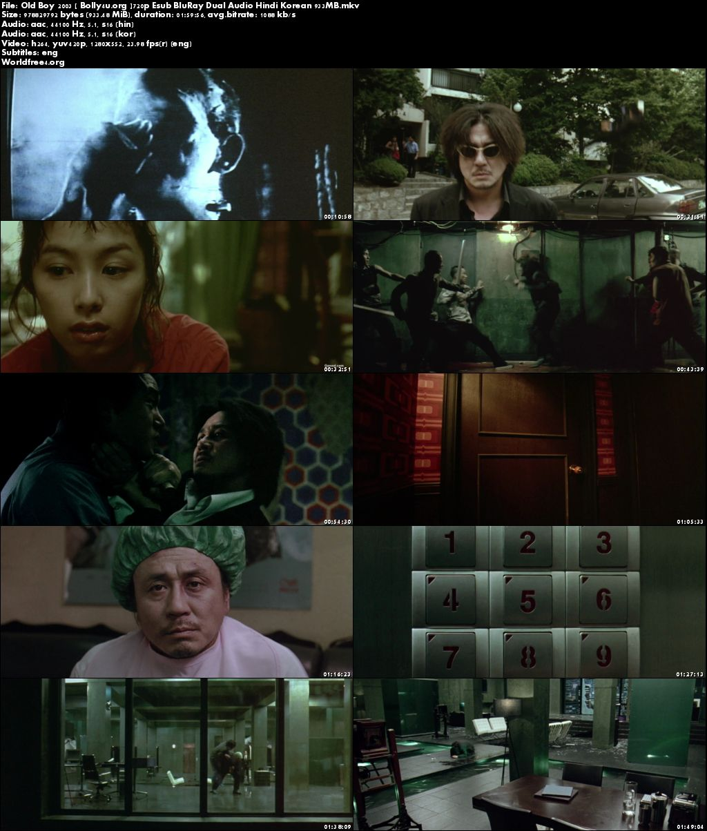 OldBoy 2003 BluRay 400Mb Hindi Dual Audio 480p
