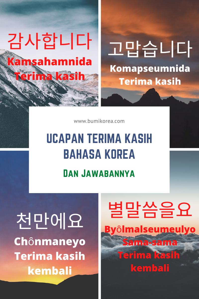 Semangat Bahasa Korea : semangat, bahasa, korea, Ucapan, Terima, Kasih, Dalam, Bahasa, Korea, Jawabannya, BumiKorea, ㅣBelajar, Untuk, Pemula