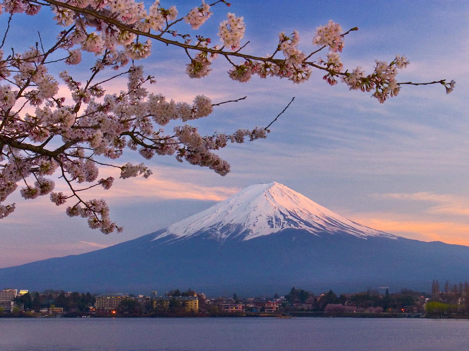 Japan Travel