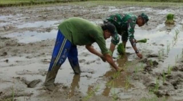 Di Bulan Suci, Serda Bahari Saragih Bermunajat Untuk Kesejahteraan Petani