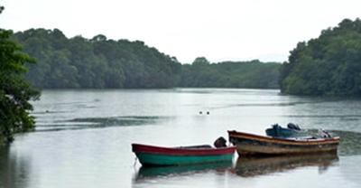 Se dispara el número de menores de edad que cruza la selva del Darién entre Colombia y Panamá