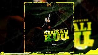 Serikali Kuu Lyrics - Paul Maker & Harmonize