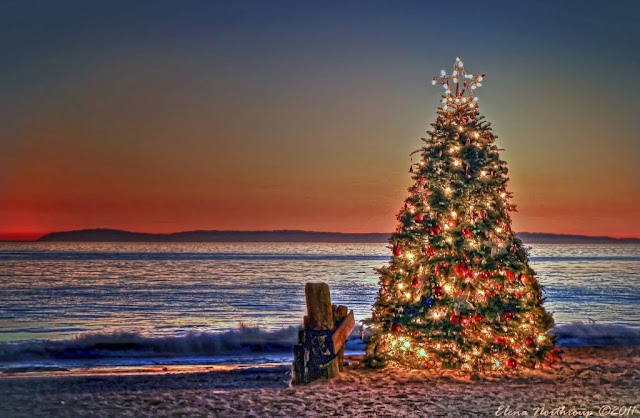 Christmas vacations in California
