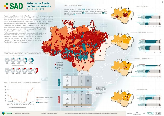 Desmatamento na Amazônia aumenta 63% em agosto deste ano, segundo Imazon