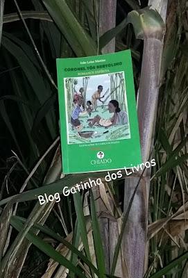 romance espírita, livro nacional, escritor brasileiro, escravidão, joão leles martins, livro juvenil, chiado editora