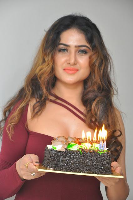 Actress Sony Charishta Birthday Celebrations 2017 HD Photos
