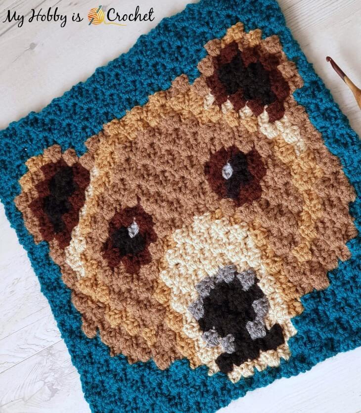 Brown Bear C2C Square