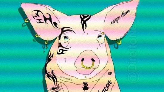 distrital lei veta tatuagem piercing animais