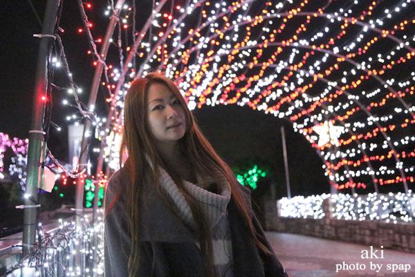 寺ヶ池公園 クリスマスイルミネーション <大阪 河内長野市>