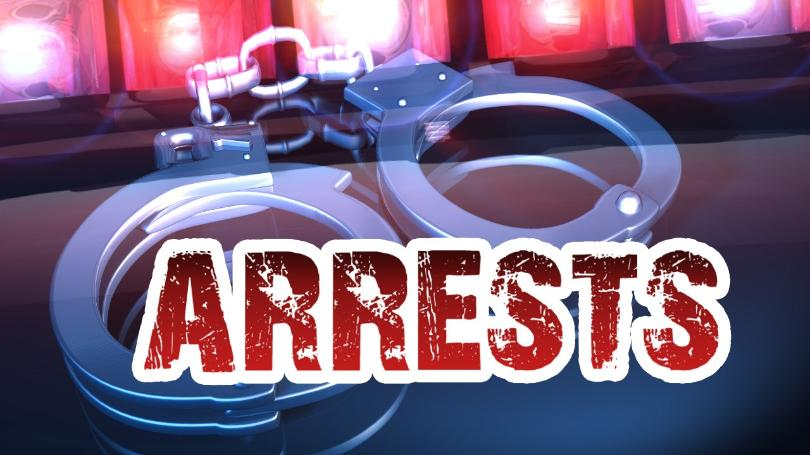 Auto burglary suspects arrested in Randall County - High