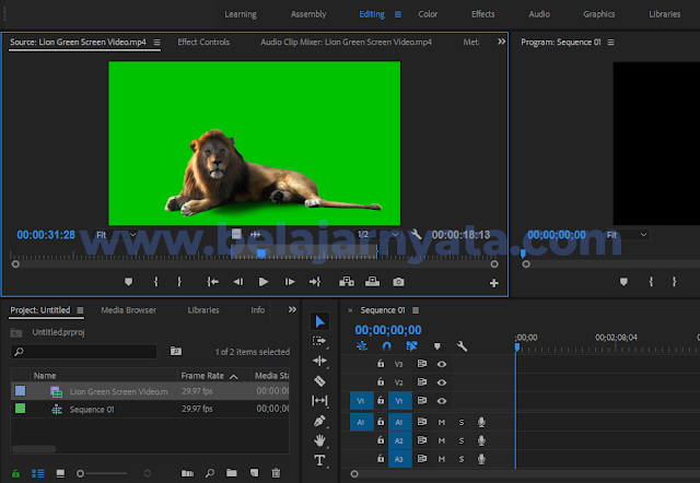 Cara Editing Video Green Screen Di Adobe Premiere Pro Bncom