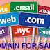 Peluang Bisnis Jual Beli Domain Bekas Masih Punya Potensi