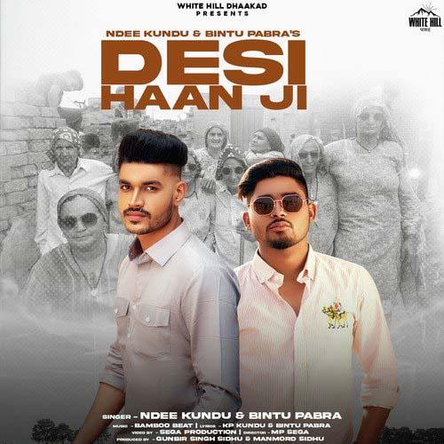 Desi Haan Ji Lyrics - Ndee Kundu & Bintu Pabra