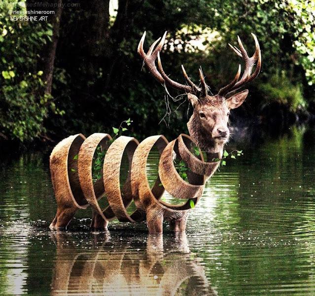 Surrealist Sliced Wildlife Photography by Ade Maolana
