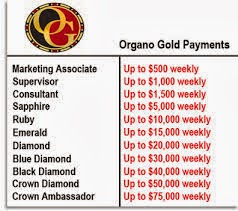 Organo Gold Potential Pay Scheme in USD