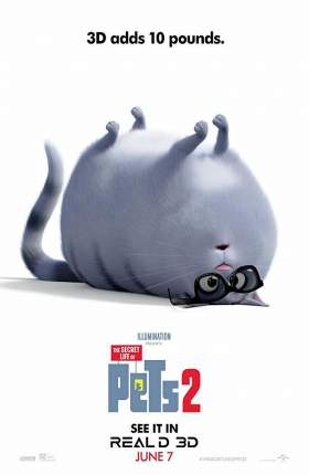 The Secret Life of Pets 2 (2019) Dual Audio Hindi 280MB WEB-DL 480p