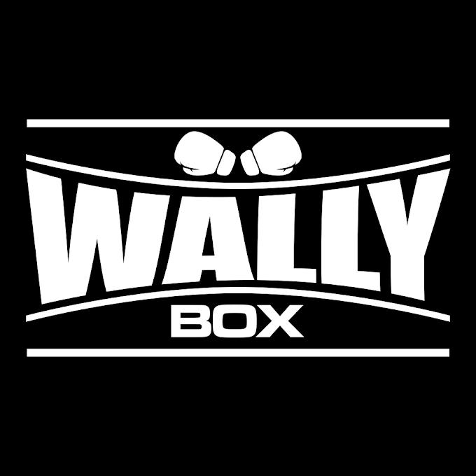 Isologo para Wally Box
