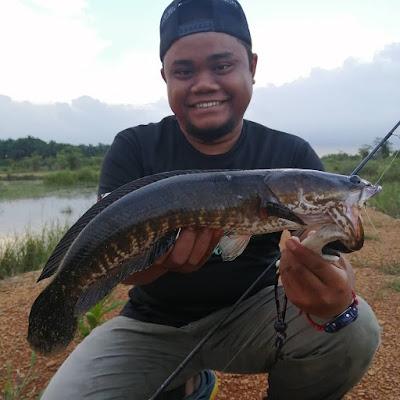 Tips Mancing Ikan Gabus
