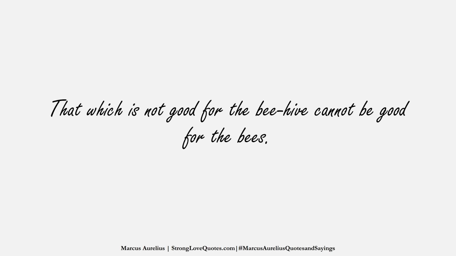 That which is not good for the bee-hive cannot be good for the bees. (Marcus Aurelius);  #MarcusAureliusQuotesandSayings