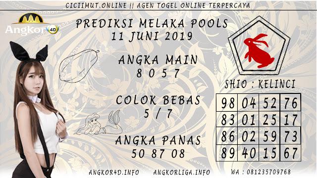 PREDIKSI MELAKA POOLS 11 JUNI 2019