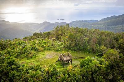 Vue aérienne su sommet des Mamelles dans le parc national de Guadeloupe