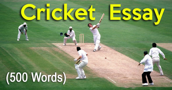 Cricket Essay