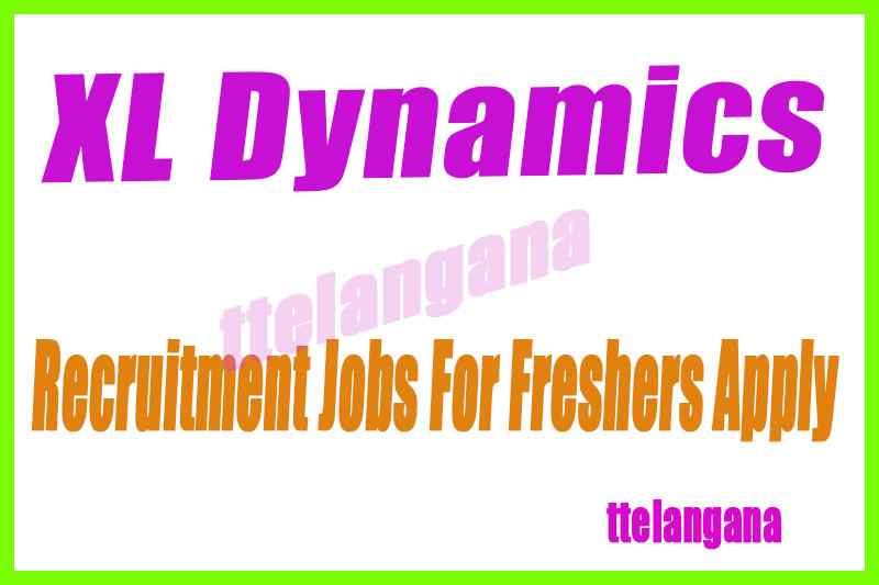 XL Dynamics Recruitment Jobs For Freshers Apply