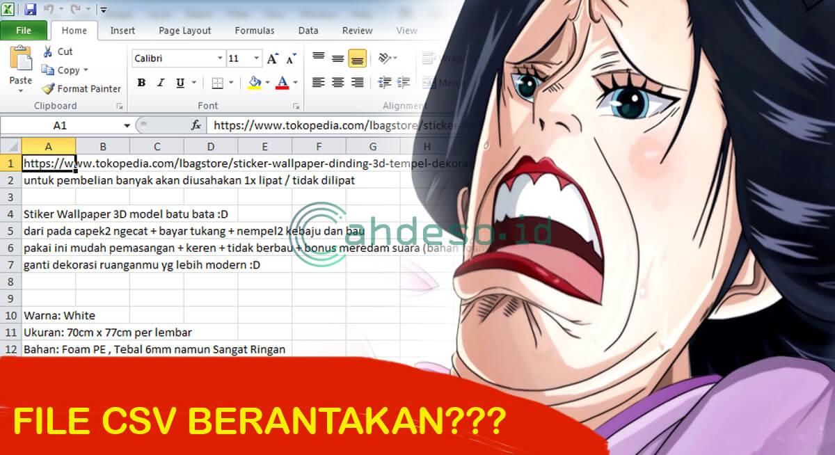 Cara Mengatasi Ms. Excel Tidak Support File CSV dan Berantakan