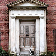 Cat in front of a Dublin door on Henrietta Street