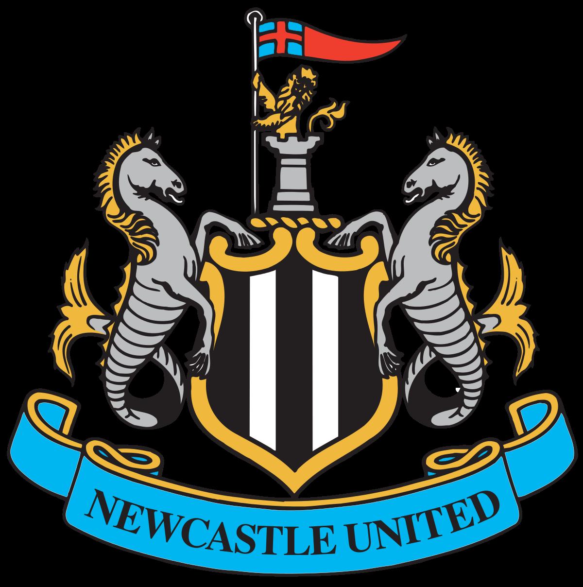 Konglomerat Dubai Membeli Klub Sepak Bola Liga Inggris Newcastle United Kabarduniaterbaru