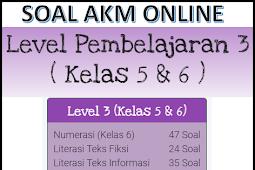 Contoh Soal AKM dan Kunci Jawaban Kelas 5 dan 6 SD (Level 4)