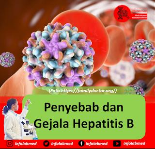 Penyebab dan Gejala Hepatitis B