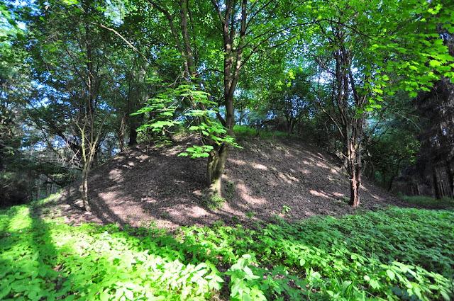 średniowieczne grodzisko stożkowe koło wsi Brzeźno