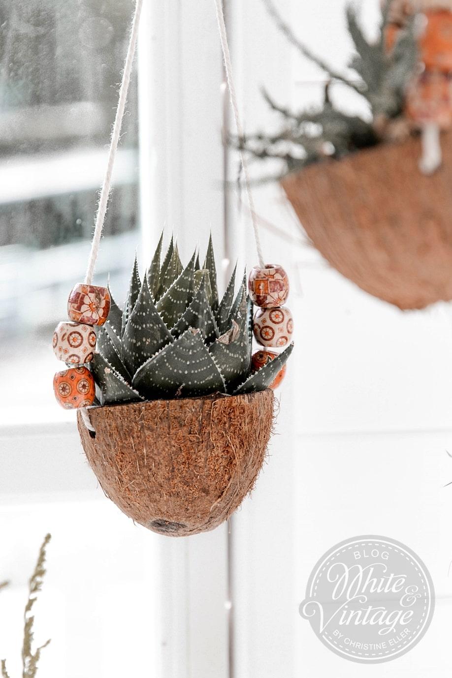 Kokos-Blumenampel aus Kokosnussschalen basteln