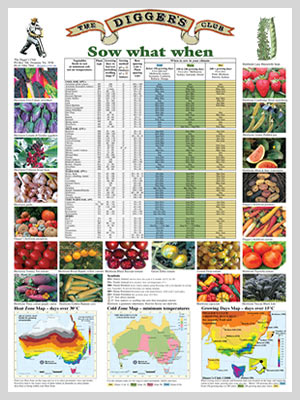 Digger   sow what when poster this full colour displays over commonly grown vegetables and herbs including instructions for whether to into also start grow gardening planting guides australia rh starttogrowspot