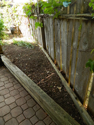 Little Italy Palmerston  Toronto Back Yard Cleanup after by Paul Jung Gardening Services