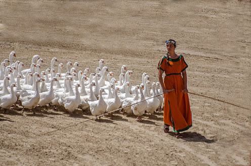 woman in an orange dress leading a flock of white geese across a barren ground