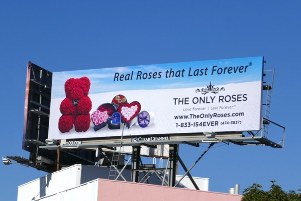 Real roses that last forever billboard