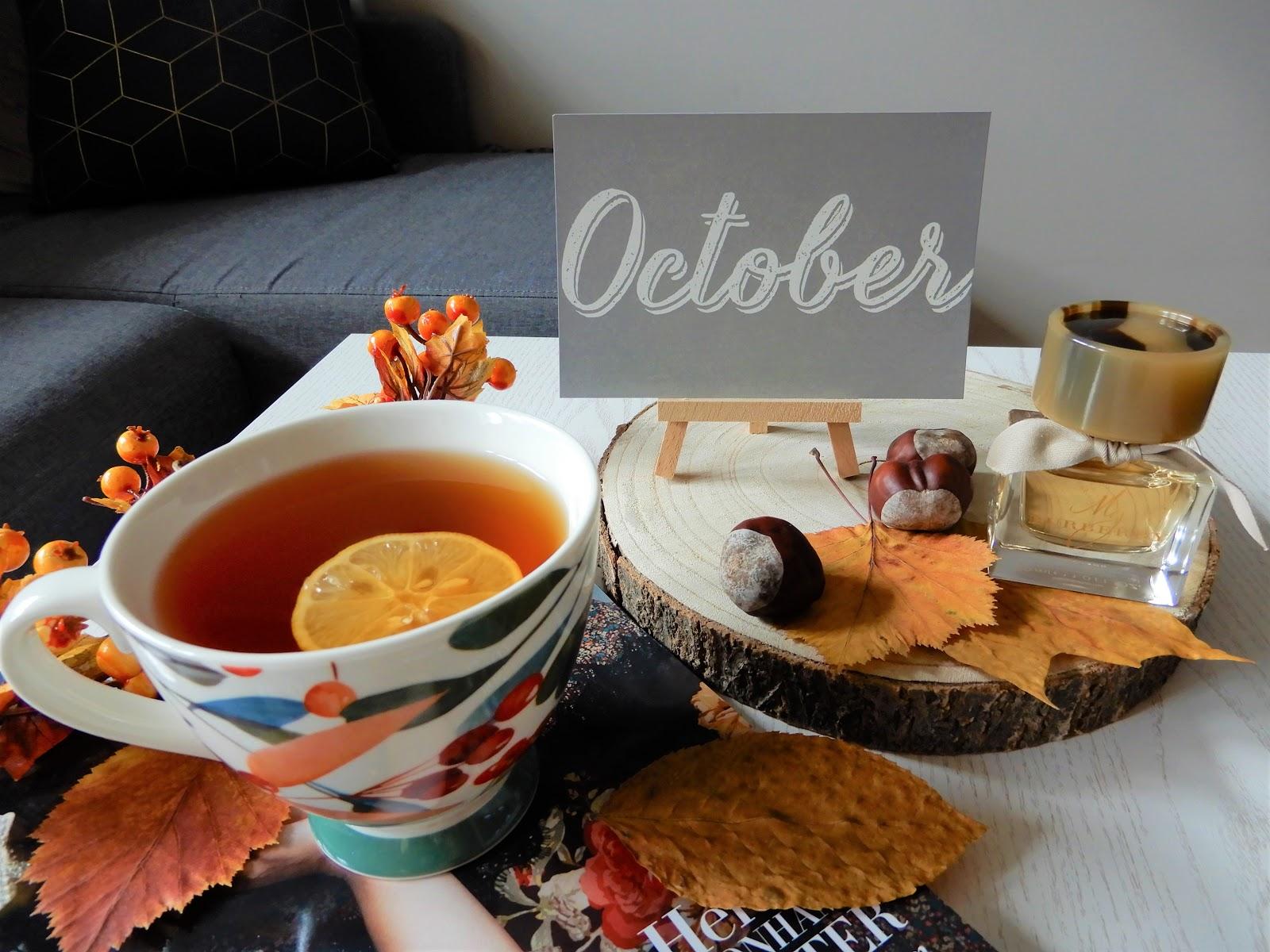 Podsumowanie października| grzybobranie| mini haul kosmetyczny| jesienne obiady