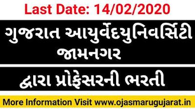 GAU Jamnagar Job Bharti, GAU Jamnagar Recruitment, Ojas Maru Gujarat, Maru Gujarat Jamnagar Job,