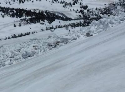全層雪崩のデブリ