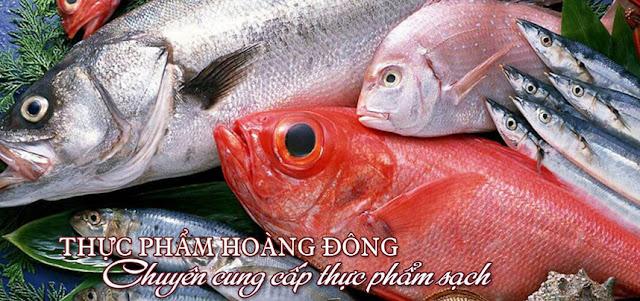 nhập khẩu thịt lợn hàng đầu Việt Nam