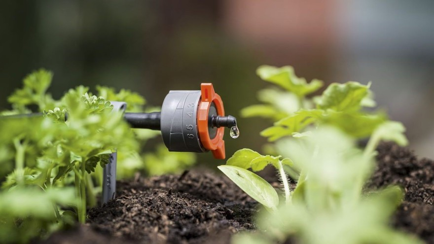 Check These Advantages and Disadvantages of Irrigation Systems