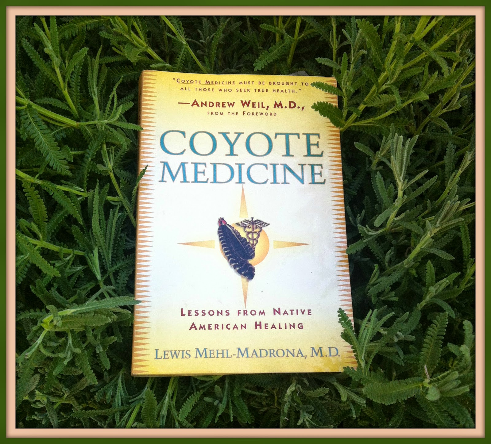 Coyote Medicine: Lessons from Native American Healing